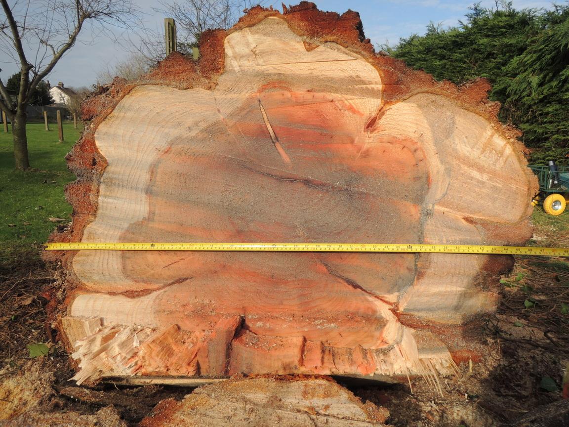 redwood-felixstowe